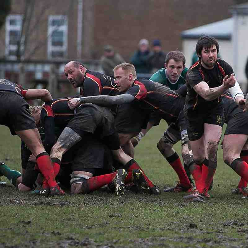Chard RFC v Sidmouth 24 - 22 Photo credit James Brown Photography