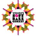 W 10 team first 1st festival Friday 1st June at Calmore Cricket Club