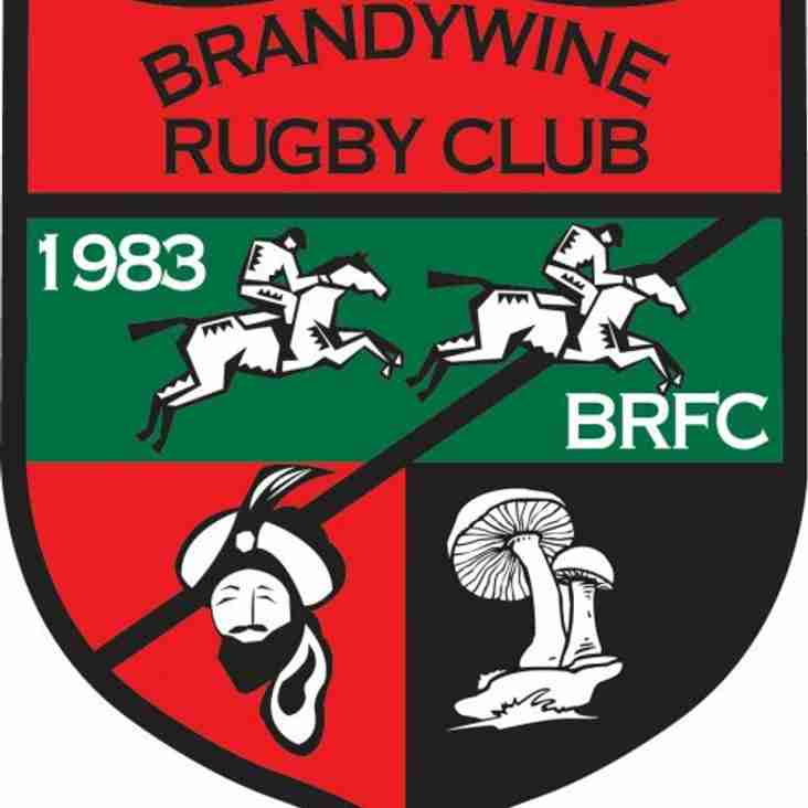 Brandywine RFC vs. Media RFC Tomorrow!