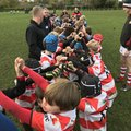 Ripon U9s welcome strong Wetherby squad