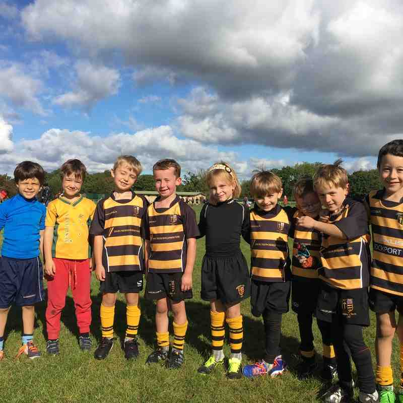 U7s (mini tag rugby) v Marple  - 2nd October 2016