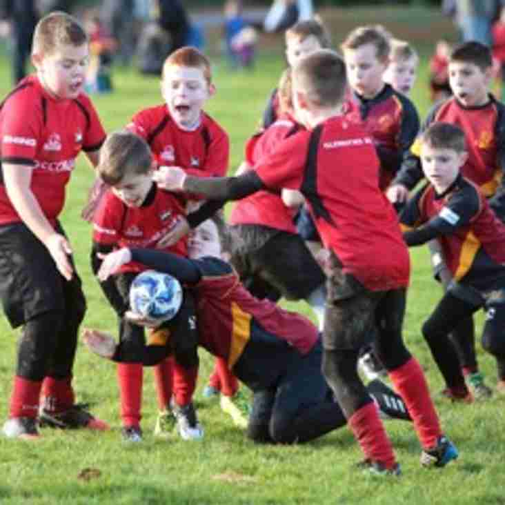 Minis Easter Holiday Training and More
