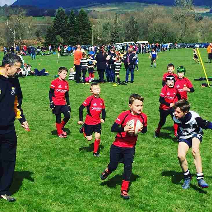 Courage at Crieff