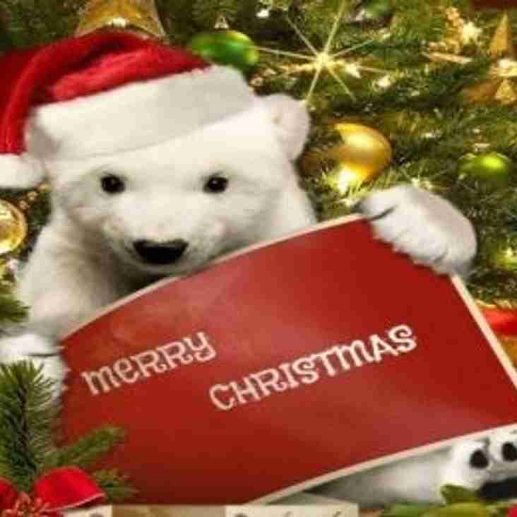Chairman's Christmas and New Year Message