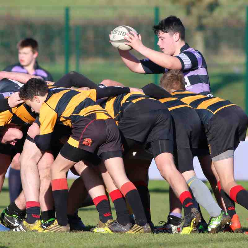 u16s vs Thornbury