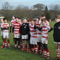 Wetherby RUFC vs. Middlesborough