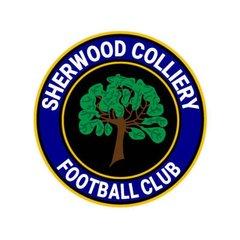 20180728b - Teversal FC v Sherwood Colliery