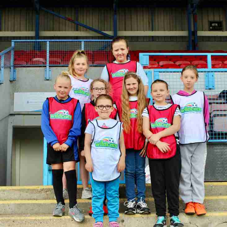 Matchday Experience for Wildcats