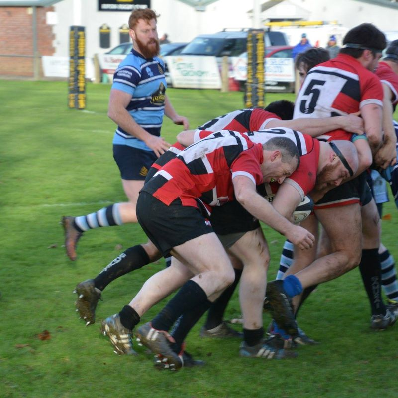 Trees Tumble Against a Robust Ripon