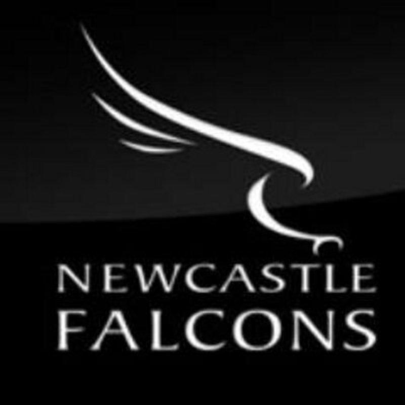 Falcons 24th November