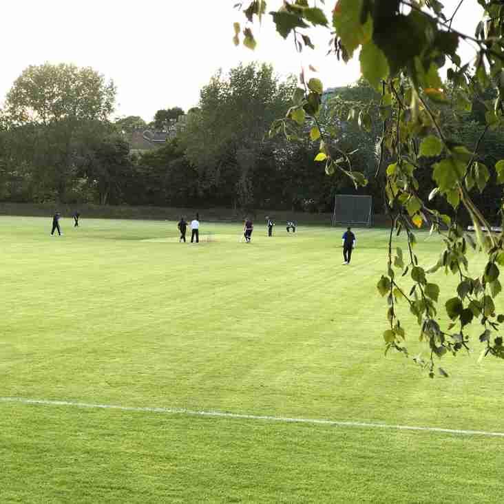 Cricket Action for Hamilton Crescent XI