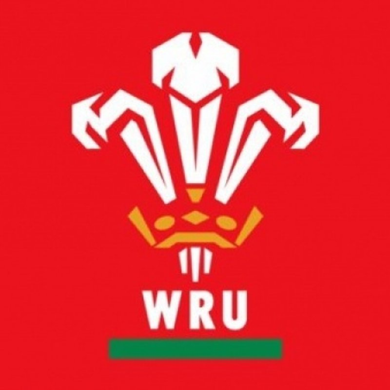 Wales announce 36-man squad for Autumn internationals