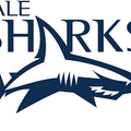 Charlie Reed selected by Sales Sharks for Singha Sevens