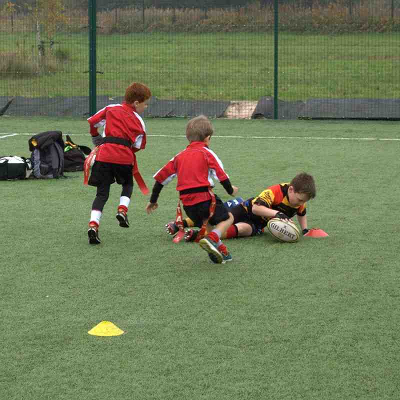 Southport Under 7s @ Sale Festival of Rugby