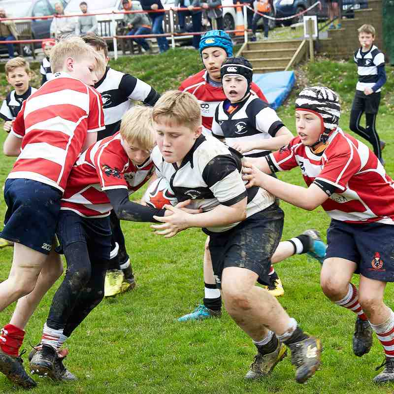 CRFC u12s vs Pulborough Home 15th April 2018