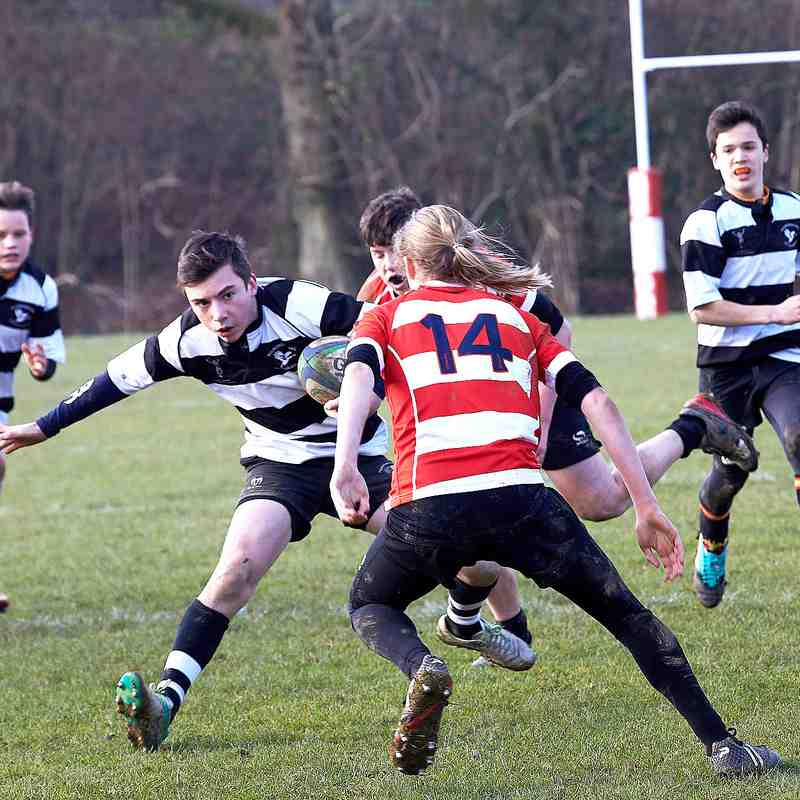 CRFC U 15s vs Pulborough 20th Jan 2019 Home
