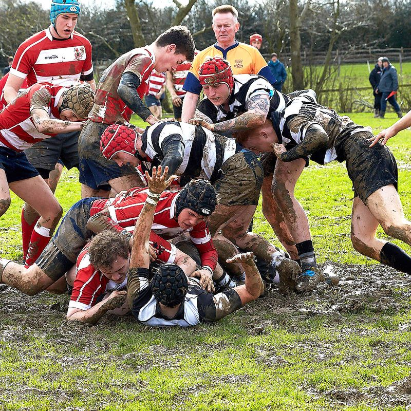 Colts vs Pulborough - Home 10th March 2019