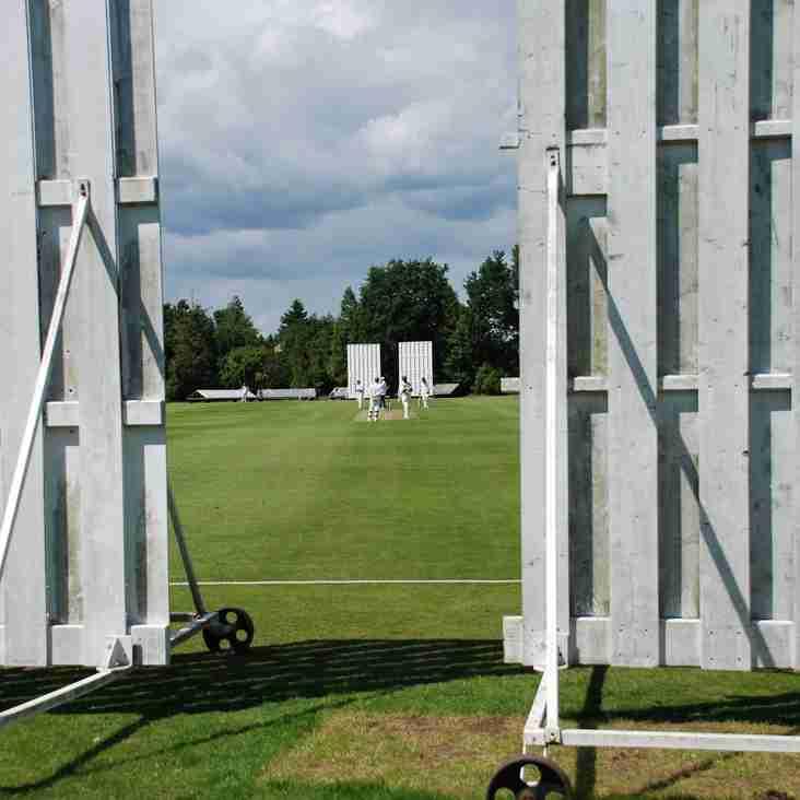 Cricket Week 2017: A Guide