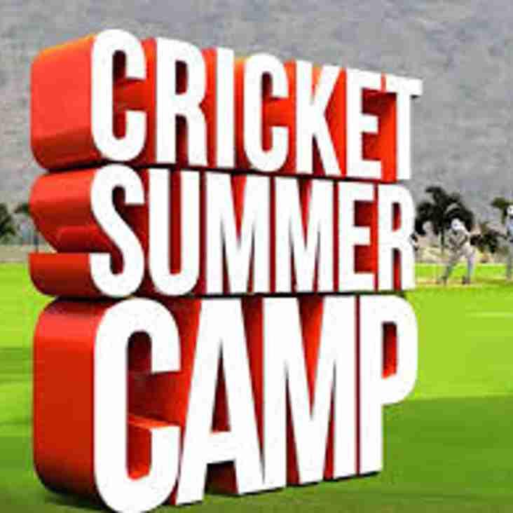 HCC Junior Summer Cricket Camp (2019)