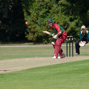 Hertford 1st XI Excel with Bat & Ball to Defeat Harpenden