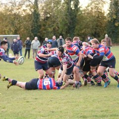 Grove RFC v Old Patesians 5 November 2016