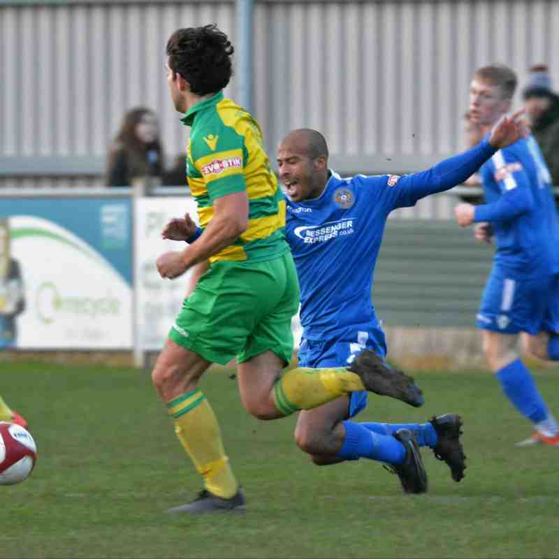 R Linnets (A) By John Driscoll