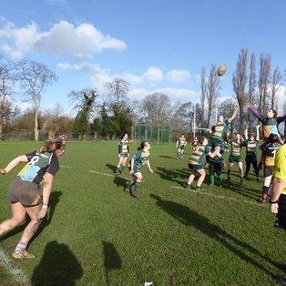 Junior Plate: Barnes Ladies vs Hackney Ladies (7th February 2016)