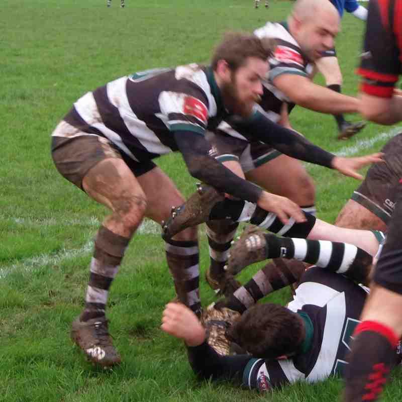 1st XV v Cheltenham North 23.1.16