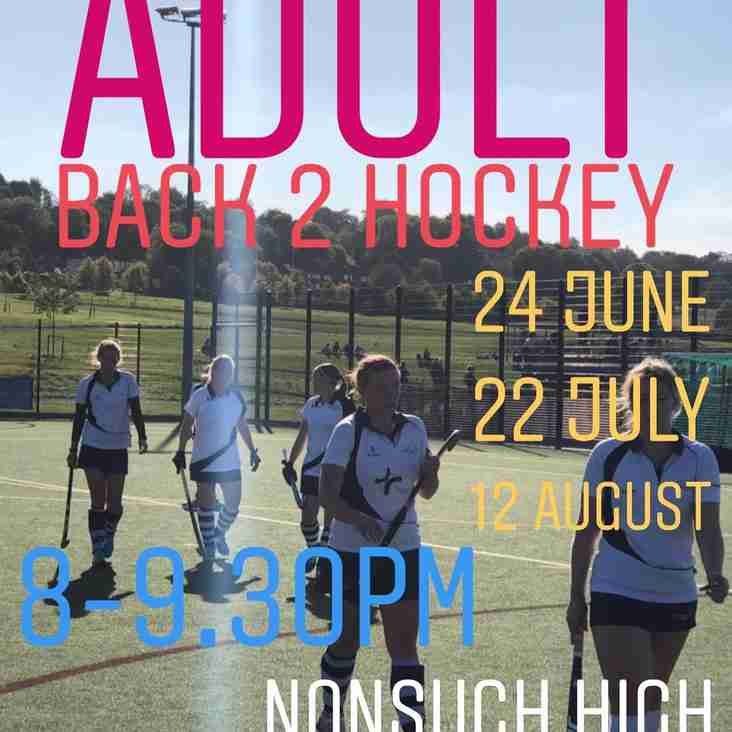 Adult Back 2 Hockey sessions