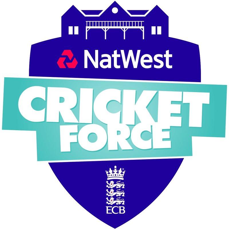 Natwest CricketForce 2017