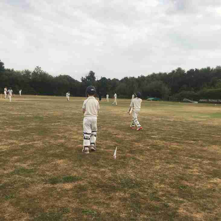 Youth Cricket Update - Weeks 1 and 2