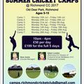 Summer Cricket Camps