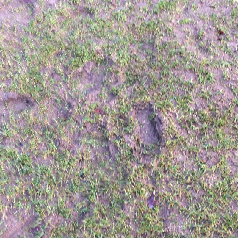Pitch inspection ahead of Cheadle Town clash