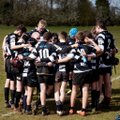 Under 14s lose to St Ives RFC 17 - 5