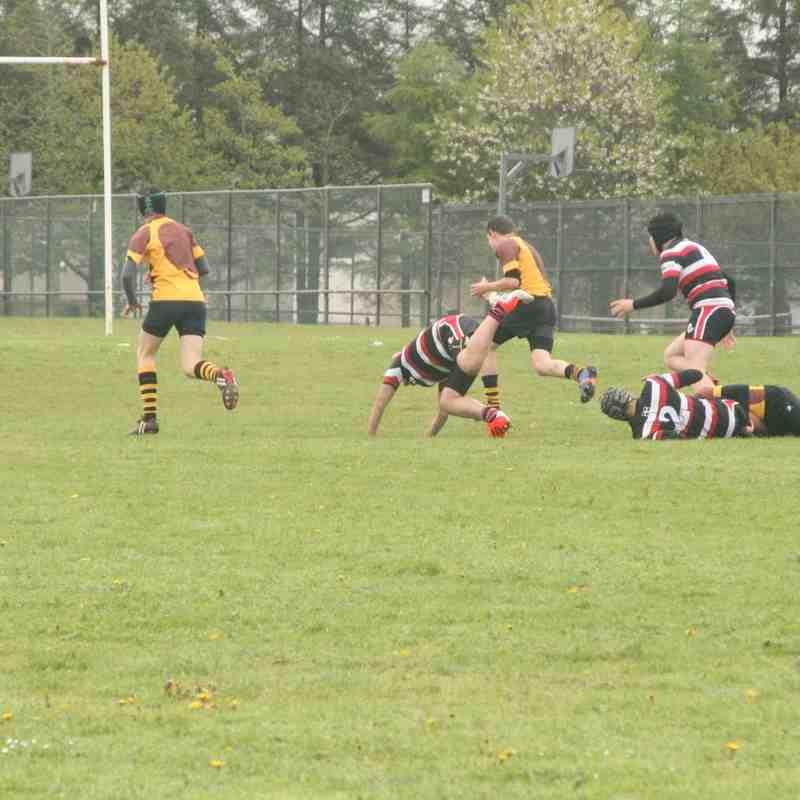 rugby 7's 2015 uder 14's