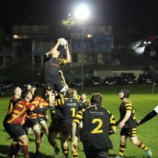 Avon Triumph in Vase against Oldfield