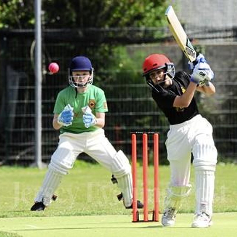 Fielding Fightback Gives Vipers Victory
