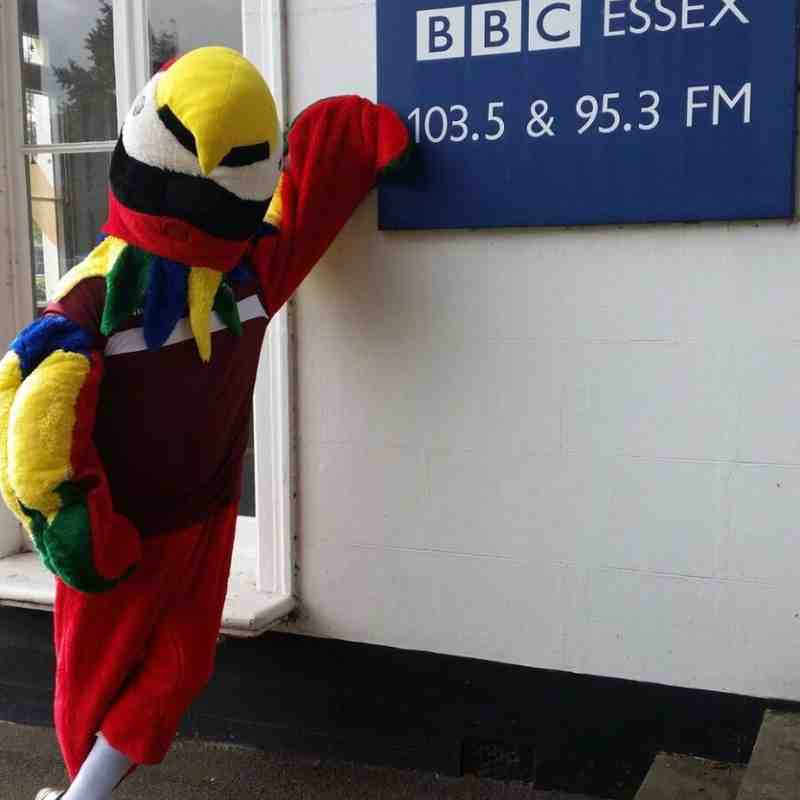 Claret The Parrot at BBC Essex!