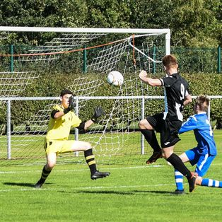 Swifts progress in Scottish Cup