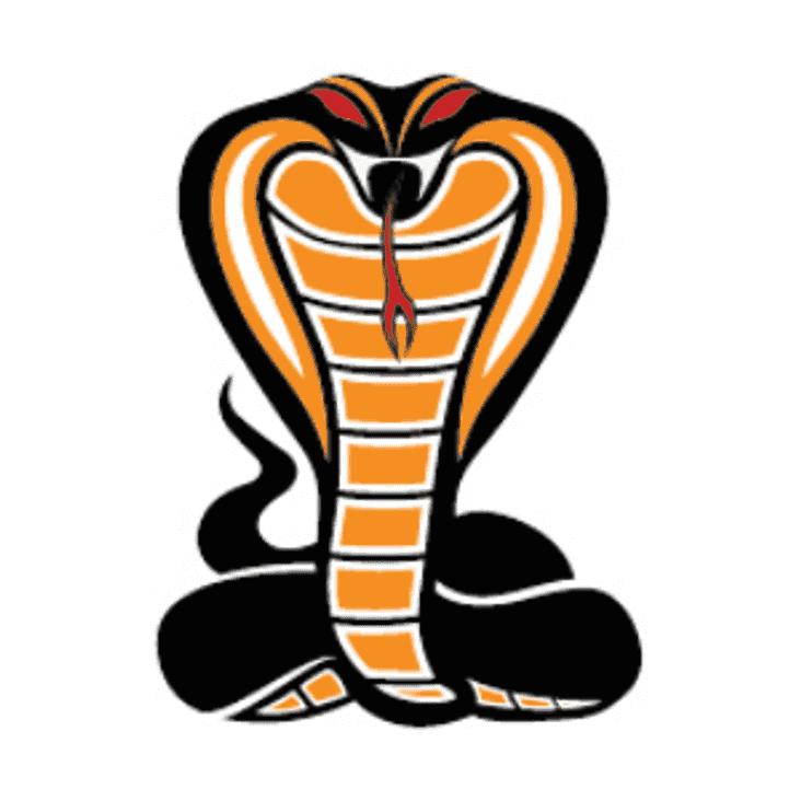 Cobra's - Women's Winter training