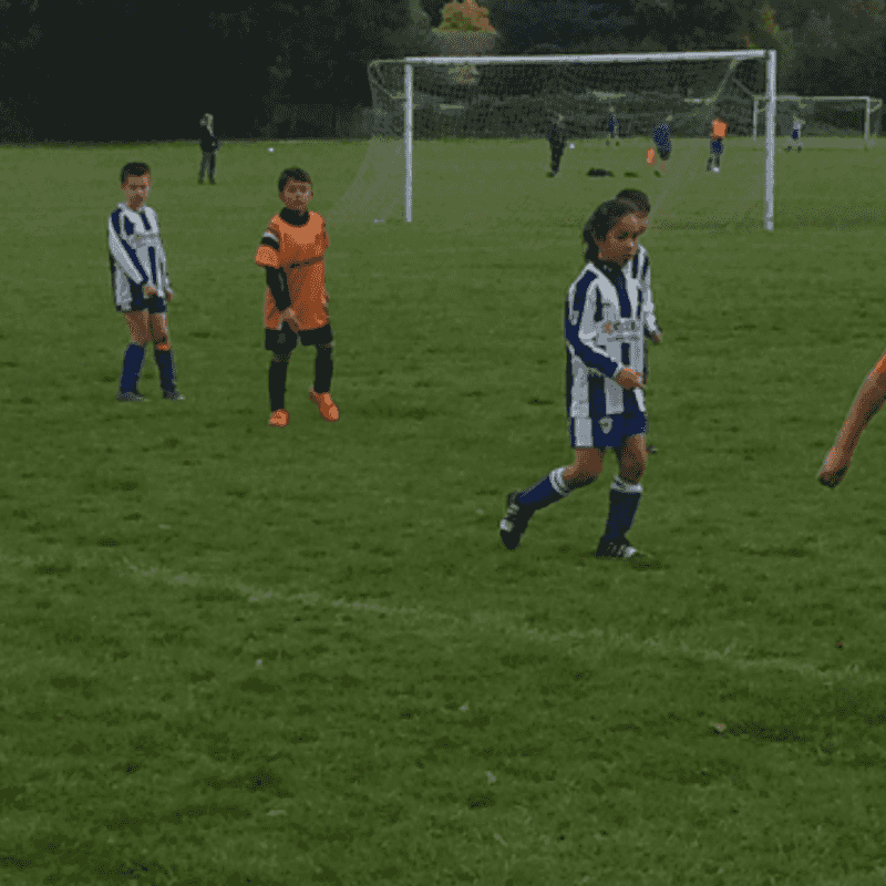 tigers u9's v AP Royals