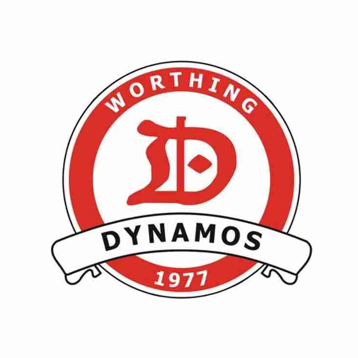 Worthing Dynamos Under 6's Show Masterclass At the Wick Dynamos Tournament