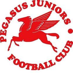 Pegasus Juniors