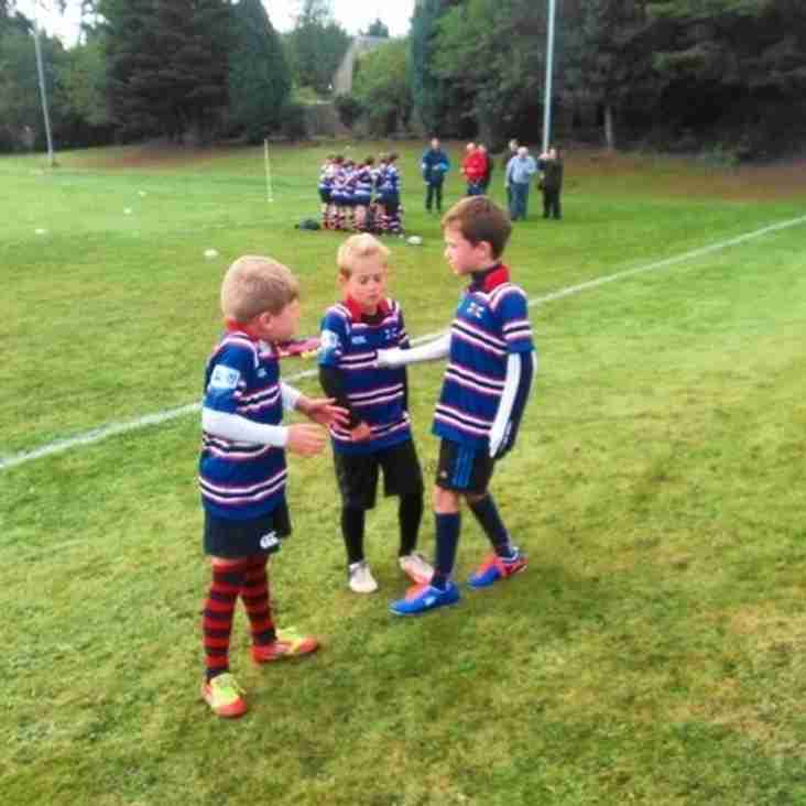 MWFC Mini's Training