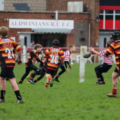 LANCS CONFERENCE AND FESTIVAL CUP round 1