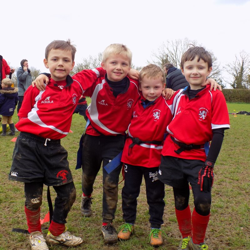 Minis at North Walsham Festival  March 2017