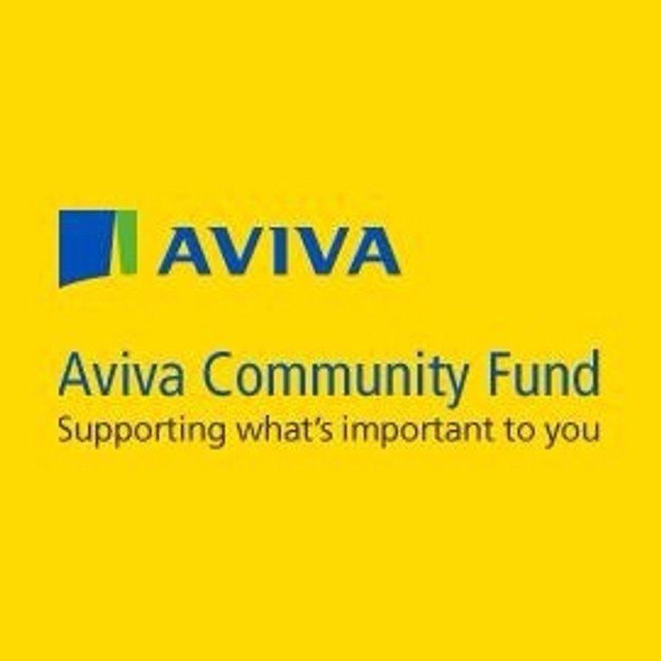 AVIVA Project Update<
