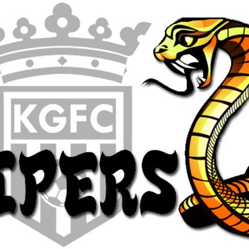 Under 14 Vipers lose to Link Royals U14 7 - 5