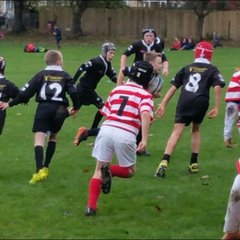 South Molton RFC under11's away to Bideford