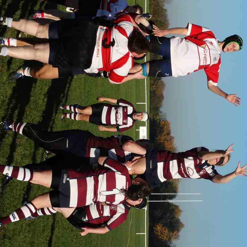 Ladies XV v Wellingborough Ladies - 1st November 2015